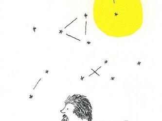 ポストカードセット-月とハリネズミの画像