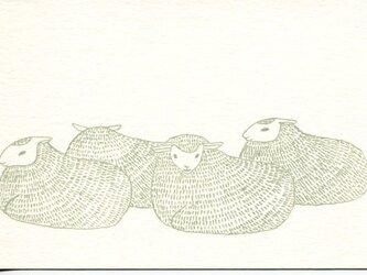 ポストカードセット-羊たちの画像