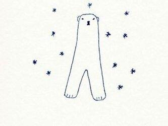 ポストカードセット-シロクマと星の画像