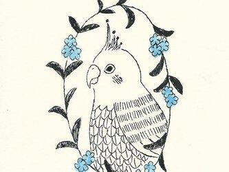 ポストカードセット-花輪と鳥の画像