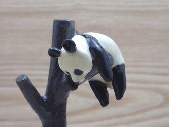 脱力!脱力!雪国パンダ-Cの画像