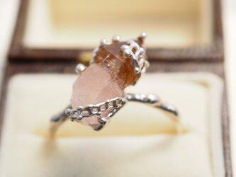 石になったキノコをリングにセプタークォーツアメジストのリング P006の画像