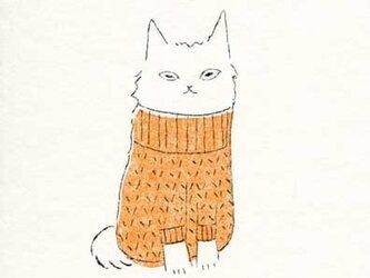 ポストカードセット-猫の画像