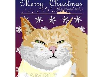 ポストカード 湘南Catsのクリスマス ⑥ シルバー猫の画像