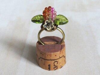 木苺の指輪 1の画像