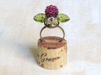 木苺の指輪 2の画像