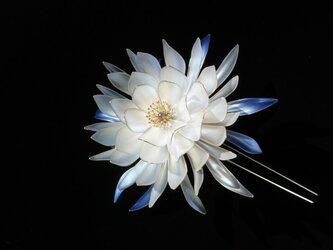 月下美人簪:月詠-Tukuyomi-の画像