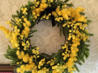 春の訪れを教えてくれるミモザのフラワーリースの画像