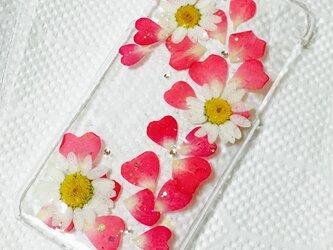ノースポールとハートのフレーム押し花iPhoneカバーの画像