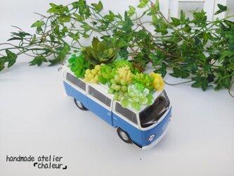 人気NO.1!家族を魅了するフェイク多肉植物!の画像