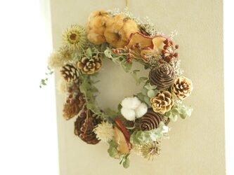 優しい木の実 wreathの画像