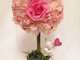 ピンクの可愛いトピアリーの画像