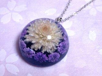 千日紅とかすみ草のドーム型ネックレス・紫の画像