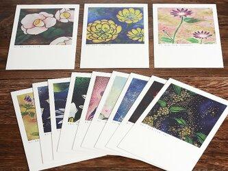 誕生花 花言葉の12ヶ月のポストカードセットの画像