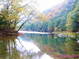 静寂の秋の画像