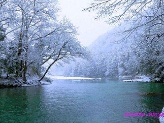 白い季節の画像
