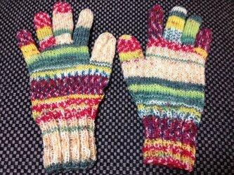 5本指手袋(Opal 2104)の画像