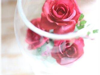 赤バラのボトルフラワー(ワイングラス)の画像