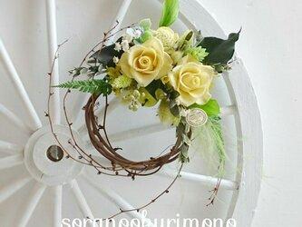 山葡萄の蔓の白いバラのリースの画像