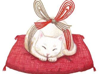 たとう包みのポチ袋 水引猫の画像