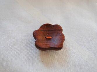 ボタン(アフリカンパドウク)の画像