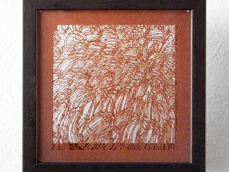 切り絵 菊 二枚重ね額縁 透明背景 茶の渋紙の画像
