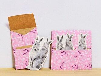 ぽち袋 3個X2セット ぽちウサギの画像