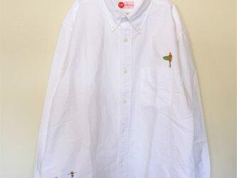 SURF & surf 刺繍 ボタンダウン OX長袖シャツの画像