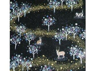 選べるポストカード(4枚)NO.1「銀河の森」の画像