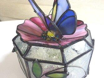 蝶の小物入の画像