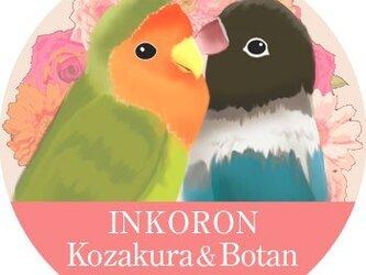 インコの香り「インコロン」☆コザクラインコ&ボタンインコの画像