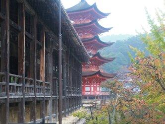 雨の千畳閣と五重塔の画像