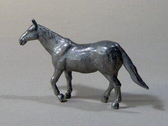 馬(親・歩く)の画像