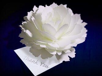 咲くようにひらく 花のサンキューカード〈ピオニー〉 forバースデー・ウェディング・アニバーサリー・クリスマス・メッセージカードの画像