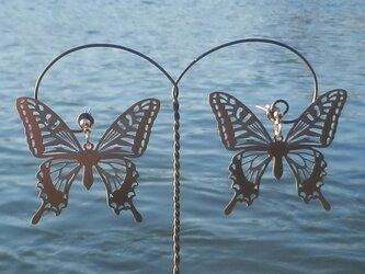 cometman 透かし 大きい蝶(チョウ)の羽のピアスorイヤリングの画像