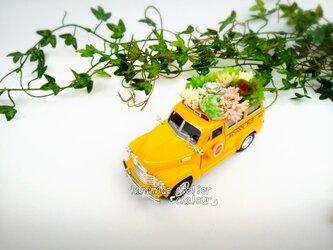 家族を魅了するフェイク多肉植物!スクールバス!の画像