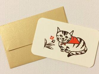 封筒付きカード 路地裏の猫 2セットの画像