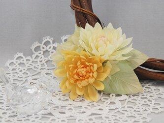 Elegant Josephine YCの画像