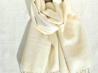 〈手織り〉ストール*カシミヤ黄縞の画像