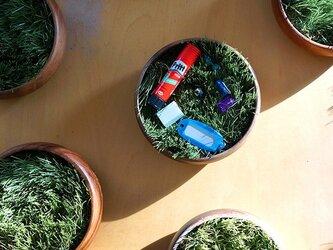 """小さな公園、緑の芝(植物)の小物入れトレイ""""midori-WF""""の画像"""