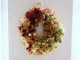ダリア アネモネ ミナヅキ wreath  の画像