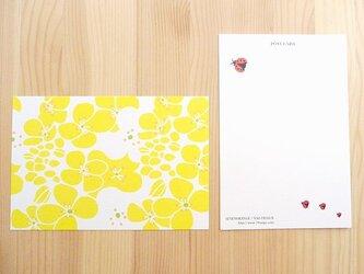 セブンオレンジ ポストカード(菜の花)2枚入りの画像