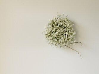 かすみ草のミニリースの画像