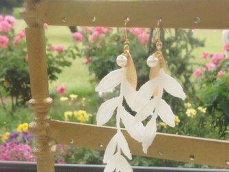 lace leaf×pearl  ピアス/イヤリングの画像
