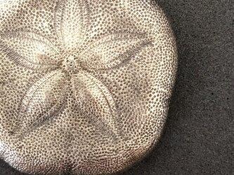 カシパンウニのペンダント(大)《受注制作》の画像