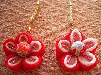 【再販】梅の花のチャーム(A)の画像