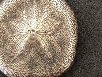 カシパンウニのペンダント(小)《受注制作》の画像