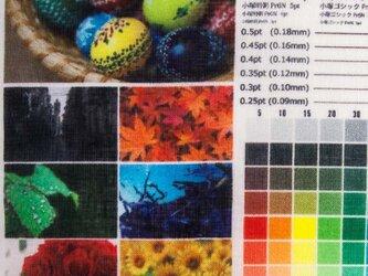 綿ローン112cm巾【オーダーオリジナルプリント生地】の画像