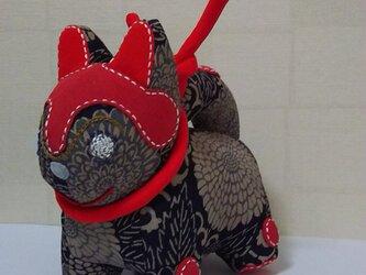 張子犬  BIYO (紺菊)の画像