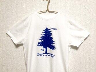 【Big tree】Rocky's オリジナルTシャツ  ホワイトの画像